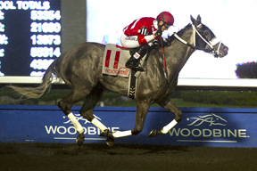 Thumbnail for Vergara Jr. wins Inaugural Canadian Apprentice Invitational