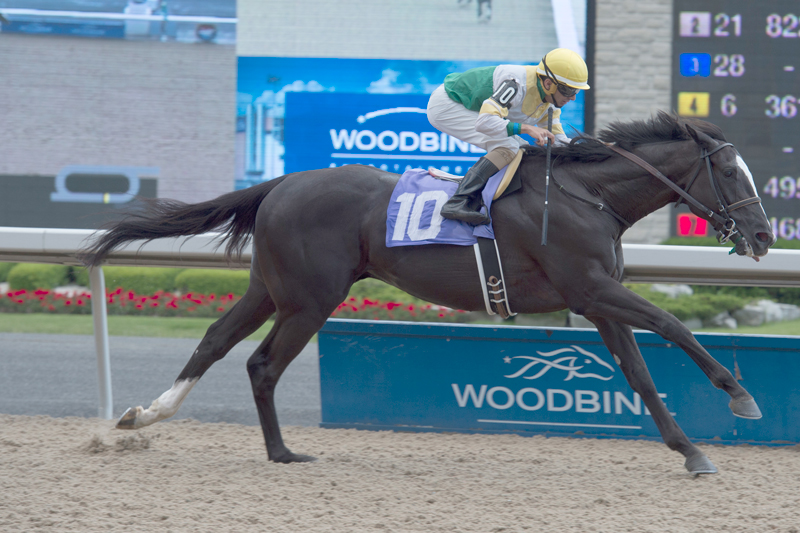 Thumbnail for Queen's Plate Notes