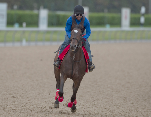 Thumbnail for Queen's Plate Notes #4