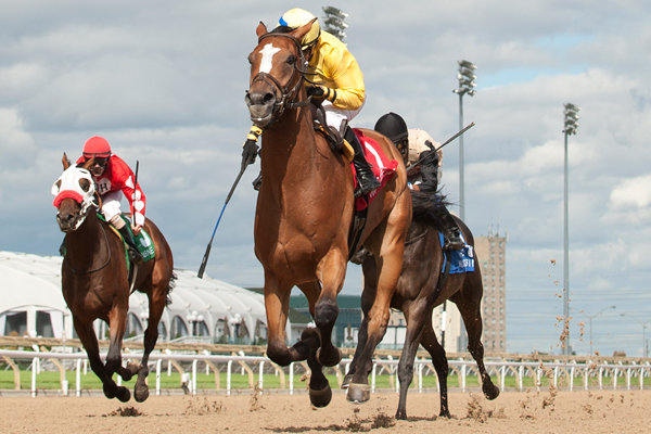 Thumbnail for Be Vewy Vewy Quiet triumphs in Clarendon Stakes