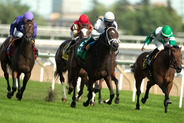 Thumbnail for Enstone triumphs in Ontario Colleen Stakes