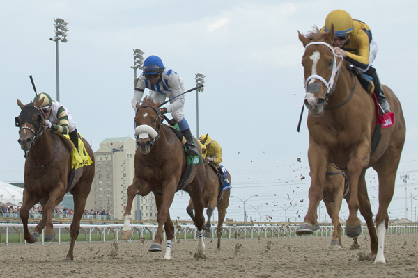 Thumbnail for Curlin's Honor impressive in Woodstock Stakes victory