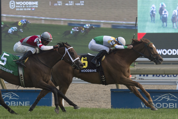 Thumbnail for Niigon's Eclipse makes the grade in Nassau Stakes at Woodbine