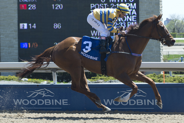 Thumbnail for Pink Lloyd wins New Providence Stakes to bring total to 10 straight