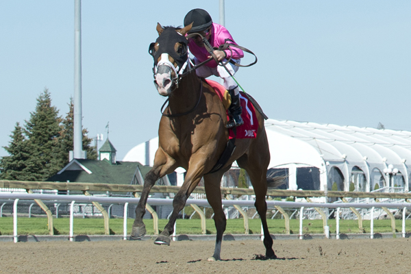 Thumbnail for Casse fillies finish 1-2 in Star Shoot Stakes at Woodbine