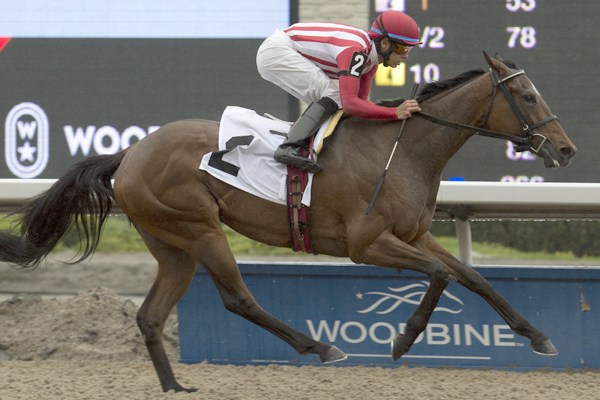Thumbnail for Fairy Hill Captures Lady Angela Stakes at Woodbine