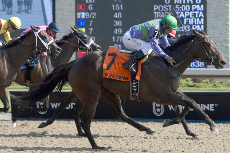 Thumbnail for Gamble's Ghost prevails in the Ontario Matron Stakes at Woodbine