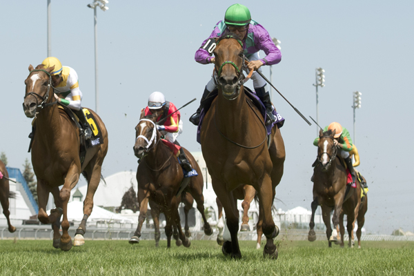 Thumbnail for Silent Sonet holds on for victory in the $100,000 Zadracarta at Woodbine