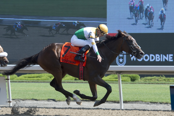 Thumbnail for Dominion Day Stakes at Woodbine Dominated by Tiz a Slam