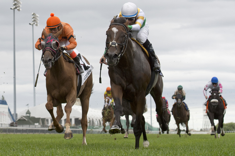 Thumbnail for Chiefswood's homebred Tiz a Slam takes the Nijinsky Stakes at Woodbine