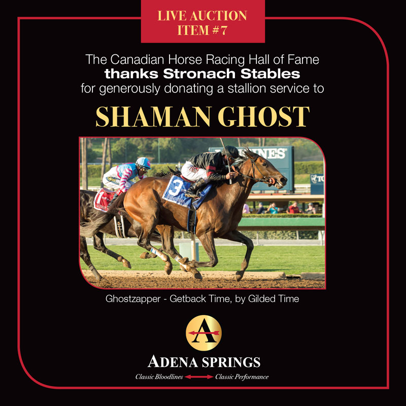 Thumbnail for Adena Springs Donates 8 Stallion Seasons to CHRHF Auction