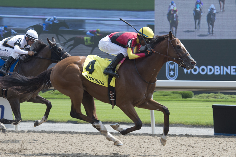 Thumbnail for Muskoka Wonder overtakes Crawl From the Bar in Clarendon Stakes