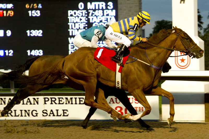 Thumbnail for Yearling Sales Stakes Night Recap: Thrillers and Upsets