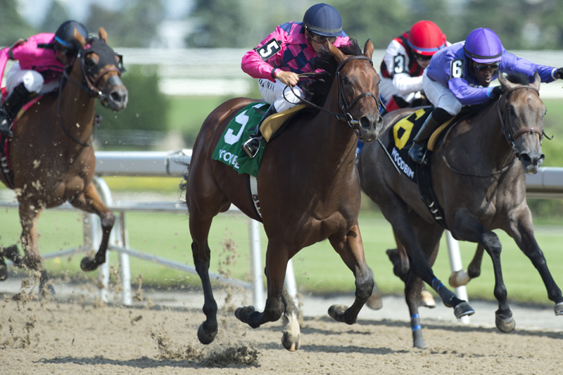Thumbnail for A 'Breathtaking' win in the Shady Well Stakes at Woodbine
