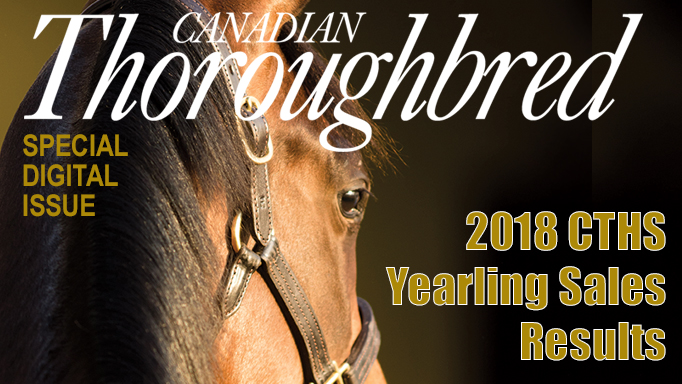 Thumbnail for 2018 CTHS Yearling Sales Results
