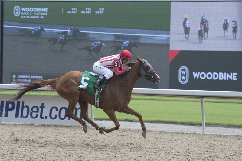 Thumbnail for A look at the Lady in Red Handicap field for Saturday