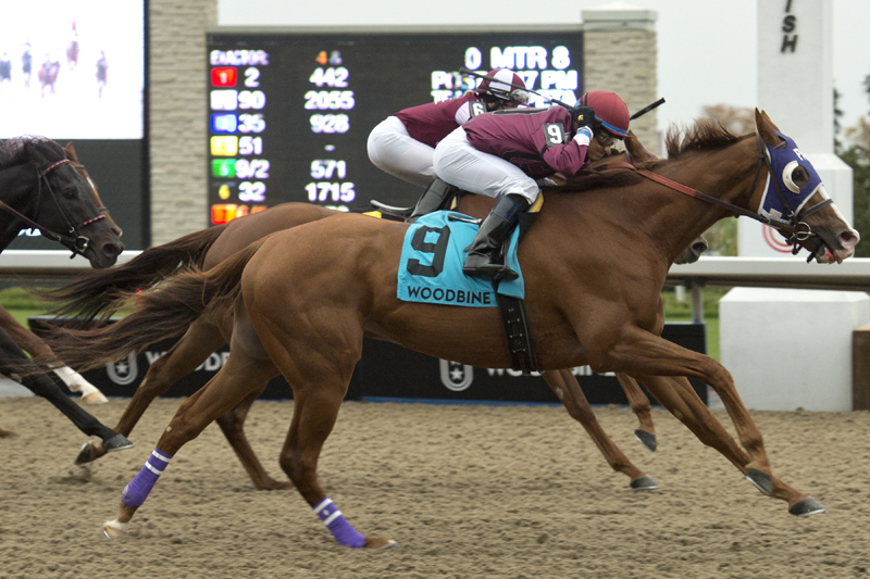 Thumbnail for Thor's Rocket zooms from last to first in Overskate Stakes