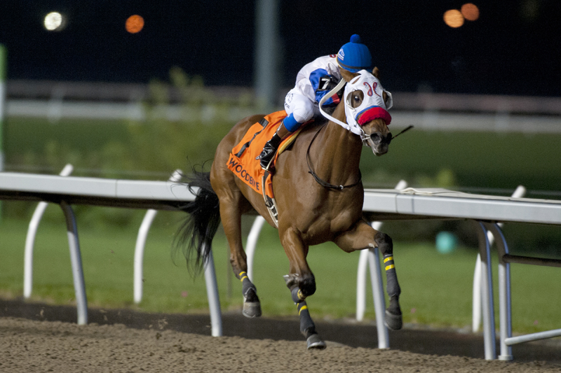 Thumbnail for First-time starter My Silencer wins Frost King Stakes at Woodbine