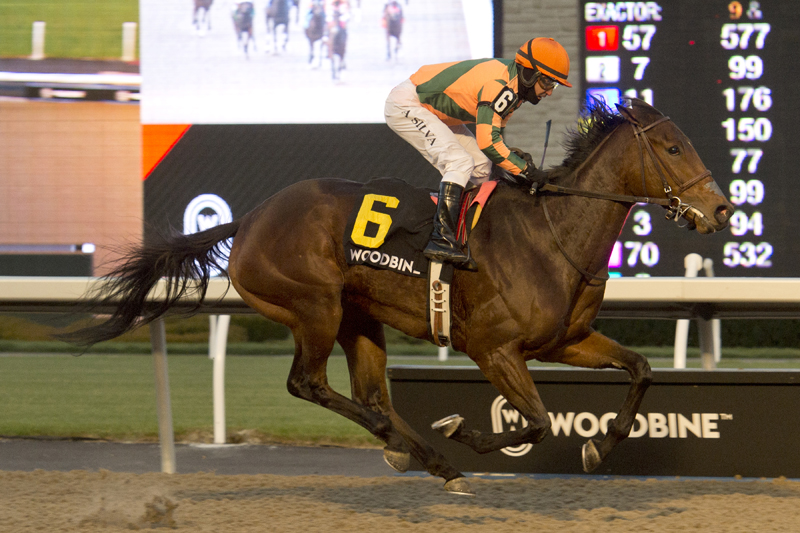 Thumbnail for She's the Berries takes the $100,000 La Prevoyante Stakes at Woodbine