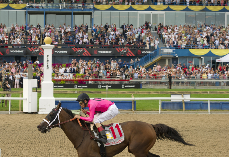 Thumbnail for Get your tickets for the 2019 Queen's Plate Racing Festival