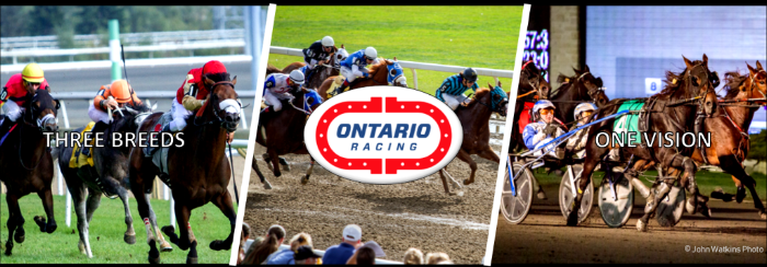 Thumbnail for Ontario Racing announces reallocation of HIP purse distribution