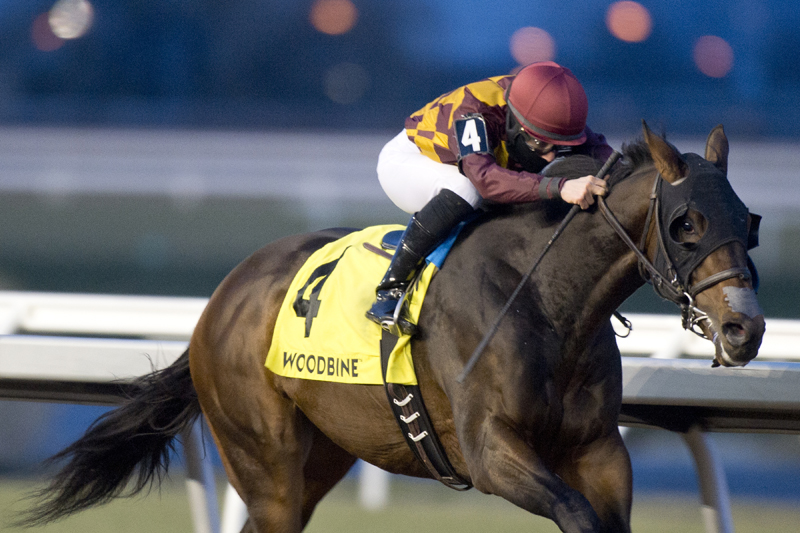 Thumbnail for Dun Drum beats the favourites in Kingarvie Stakes at Woodbine