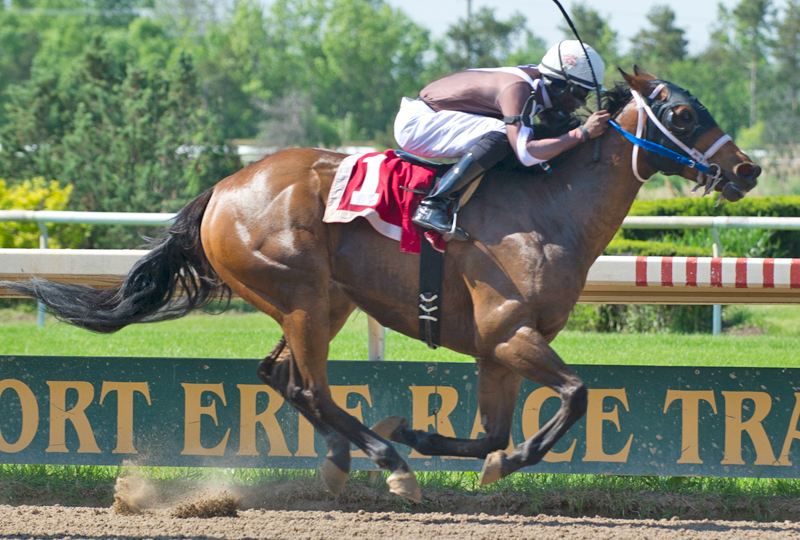 Thumbnail for Fort Erie Race Track Ready to Kick Off 122nd Season of Racing