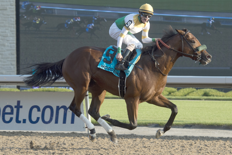 Thumbnail for Yorkton takes to the turf to contest Connaught Cup at Woodbine