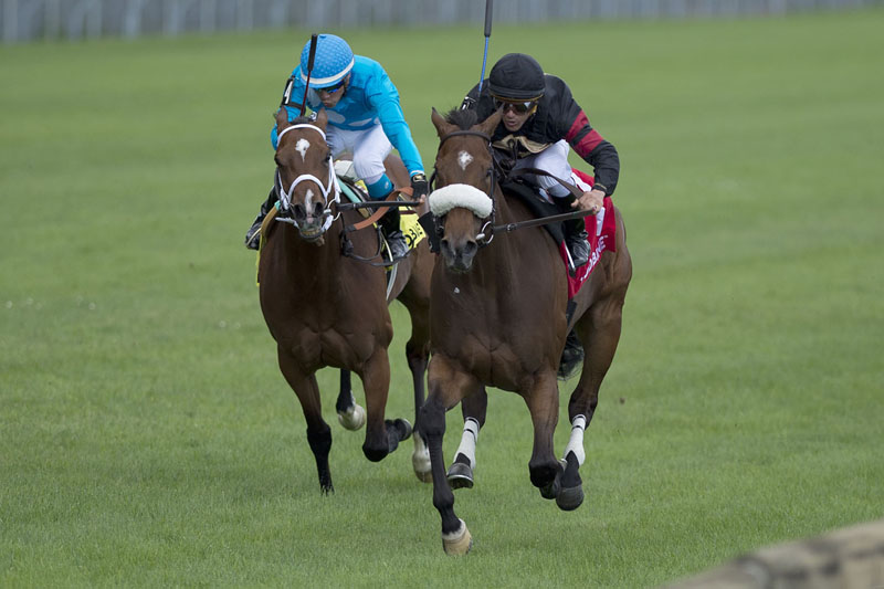 Thumbnail for Favourite Holy Helena victorious in Dance Smartly Stakes