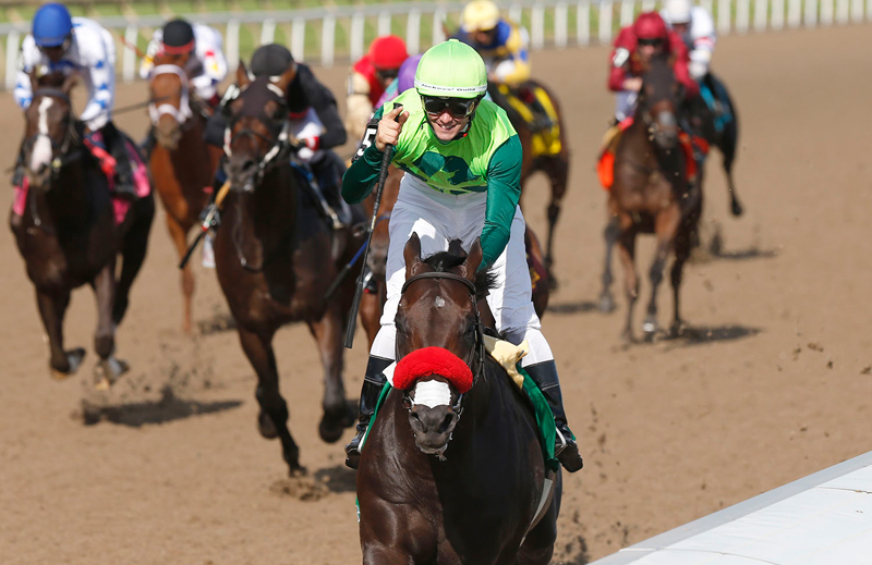 Thumbnail for Queen's Plate Contenders Will Rematch in the Prince of Wales