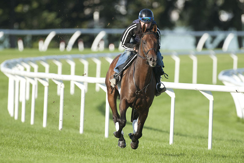 Thumbnail for Avie's Flatter, Tone Broke face off again in Breeders' Stakes at Woodbine