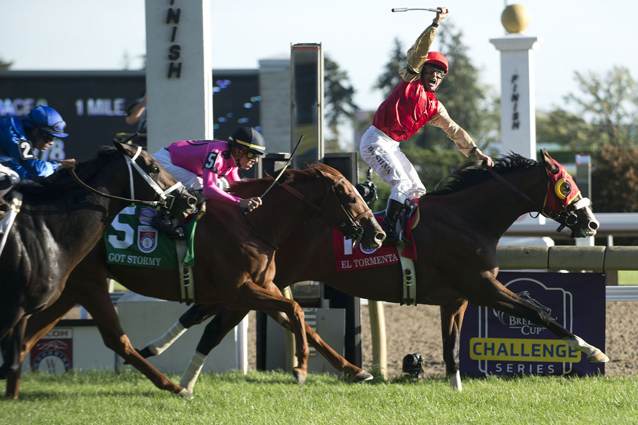 Upset win for El Tormenta in Ricoh Woodbine Mile