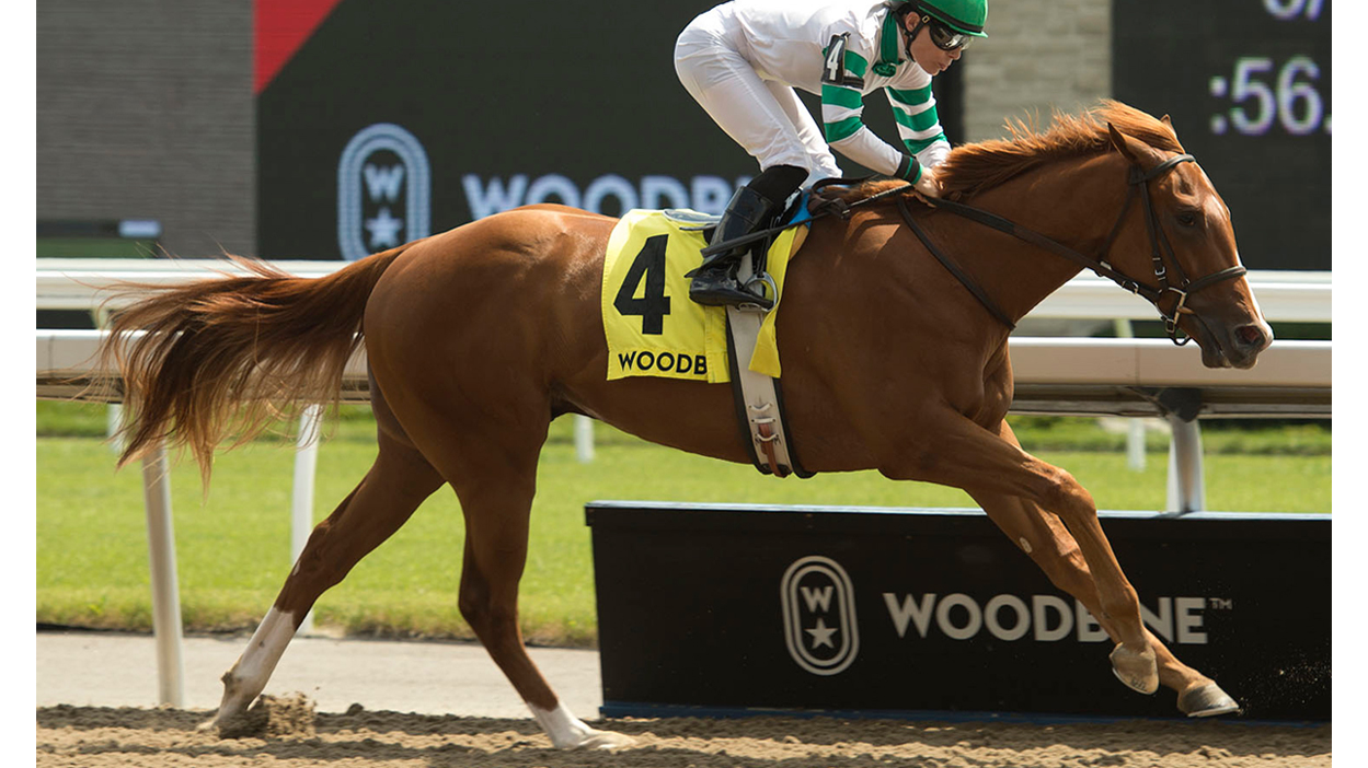 Thumbnail for Natalma Stakes and Summer Stakes Fields Take Shape