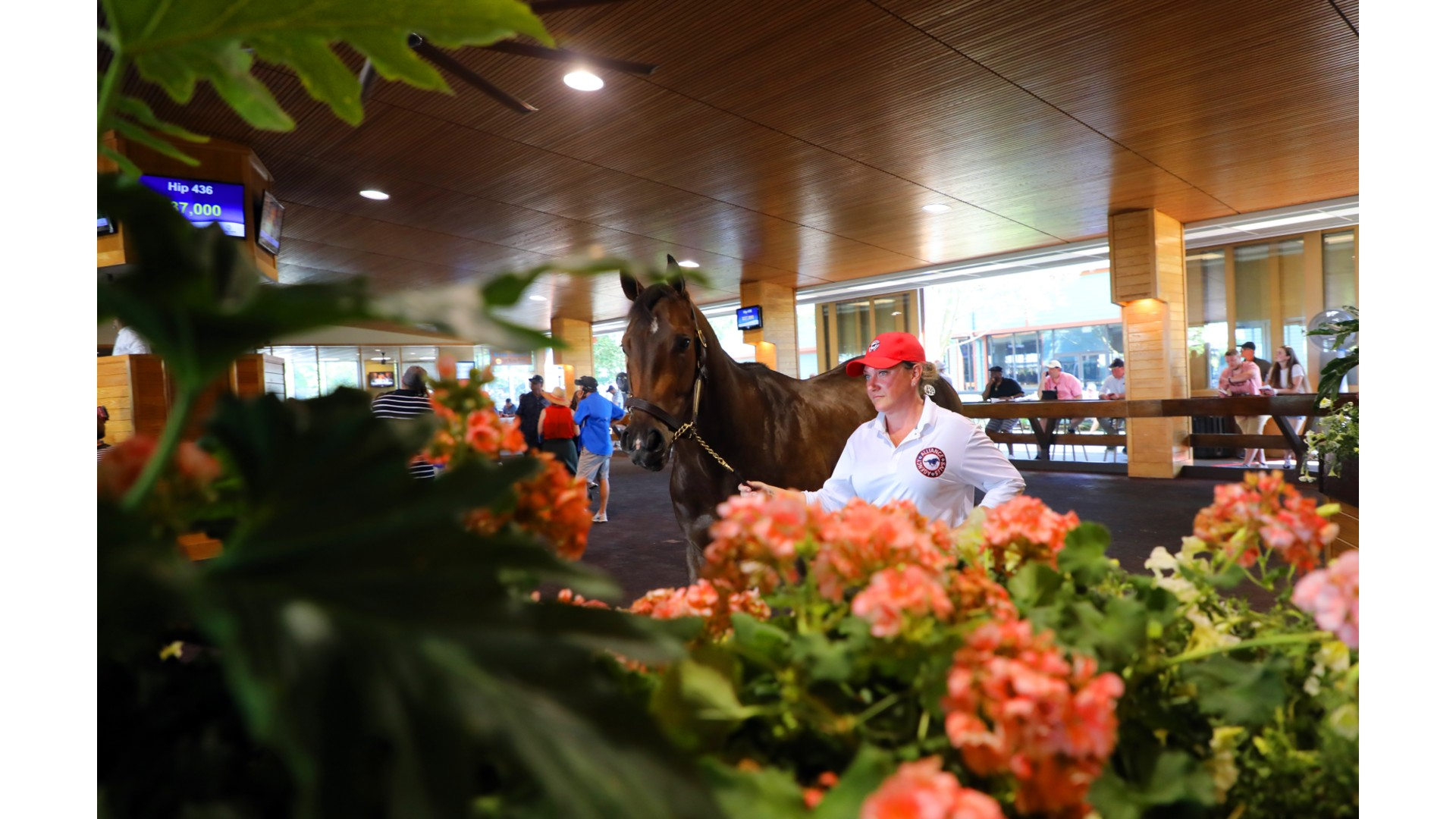Fasig-Tipton October Yearling Sale Begins Oct. 21