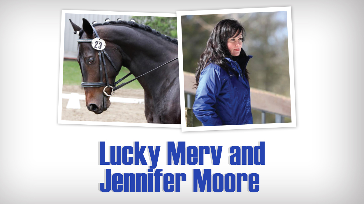 Thumbnail for OTTB Lucky Merv Earns TIP Reserve Championship