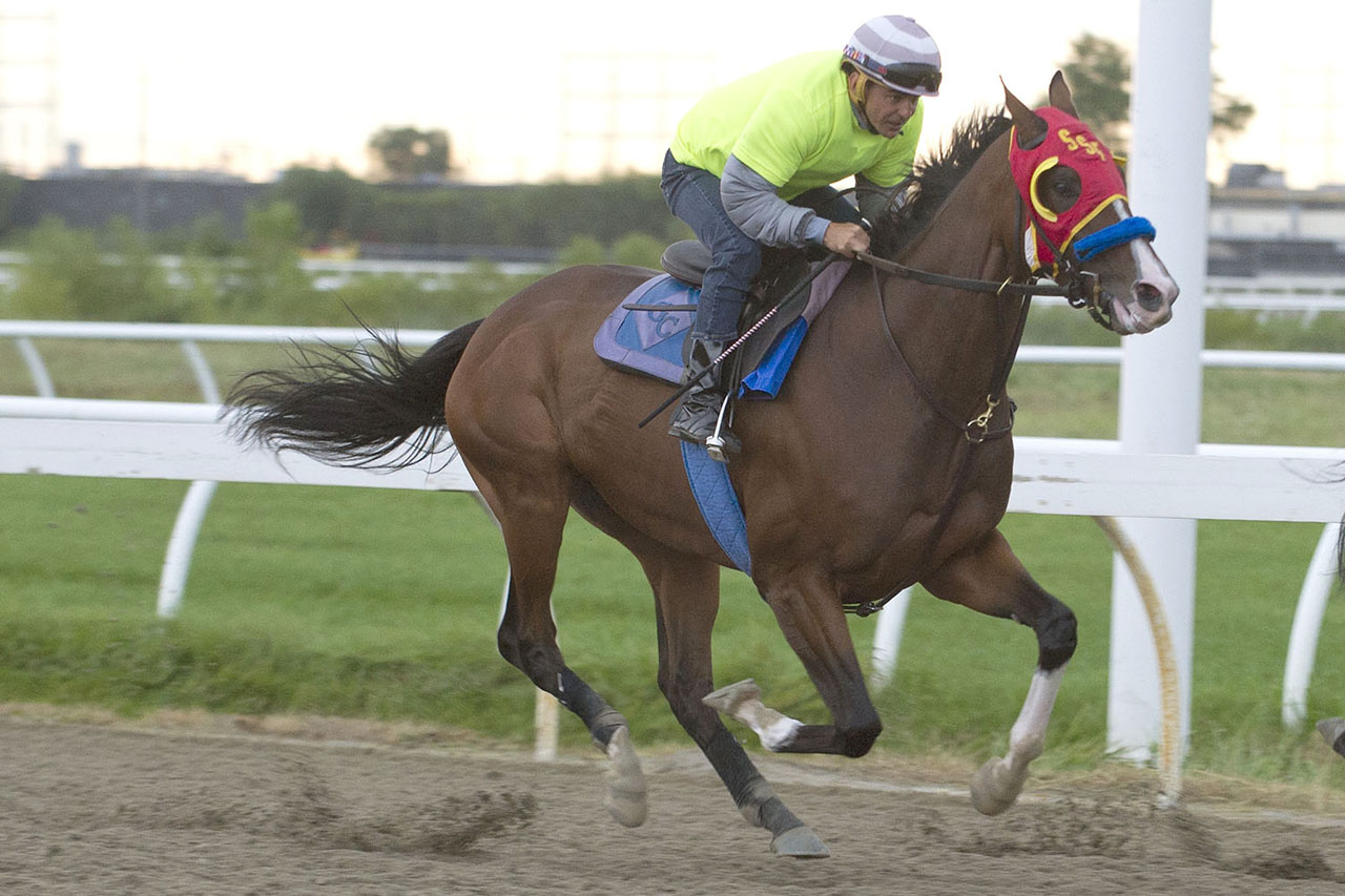 Thumbnail for Ricoh Woodbine Mile – An Early Look At The Probable Field