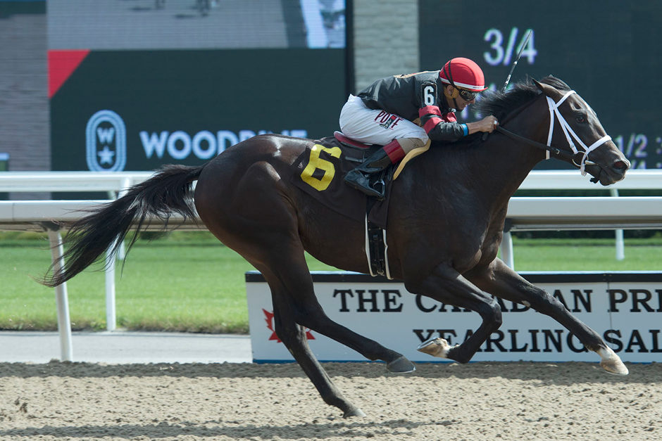 Thumbnail for Kevin Attard Trainees to Take on Cup & Saucer Stakes