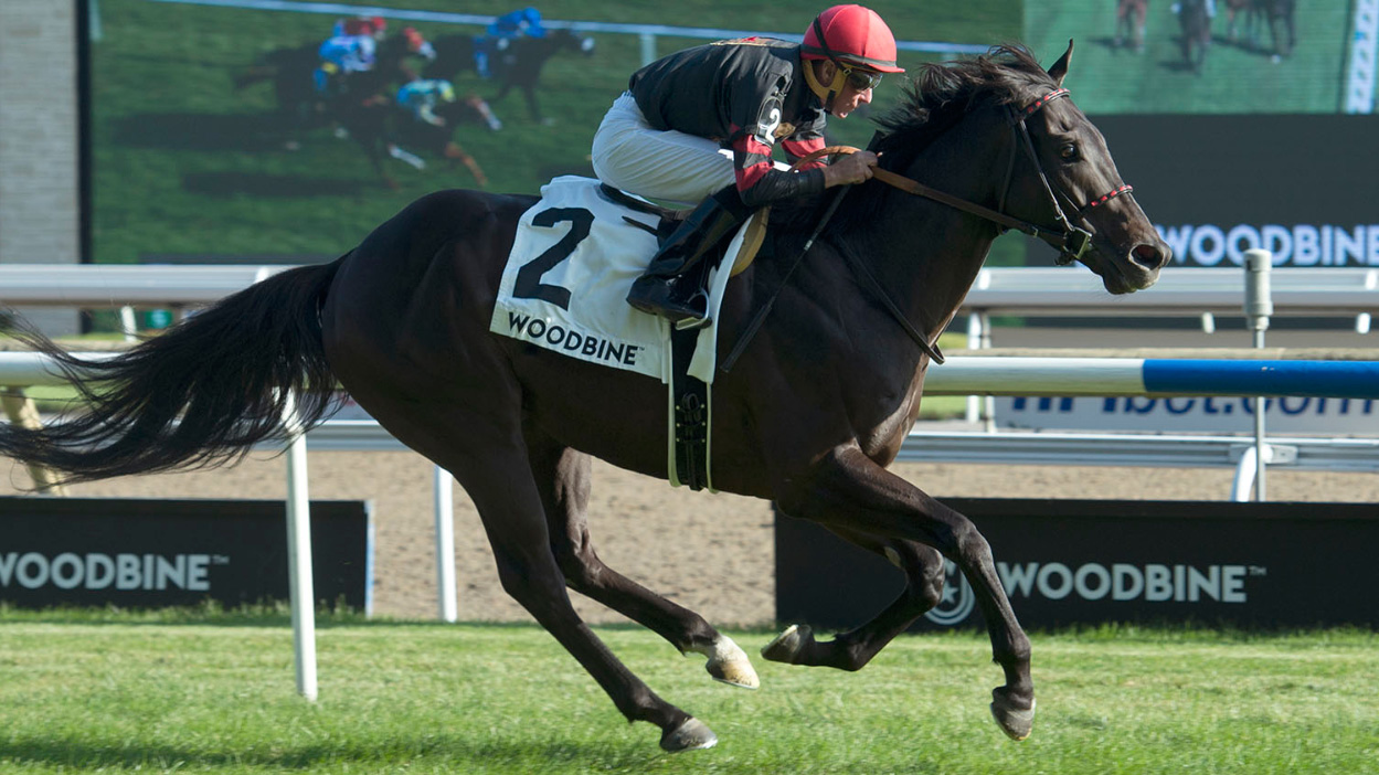 Thumbnail for Silent Poet Looks to Make Some Noise in the Ricoh Woodbine Mile
