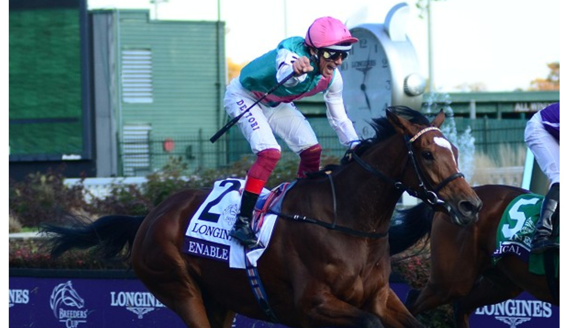 Thumbnail for Stall Nine for the great Enable for Sunday's Arc