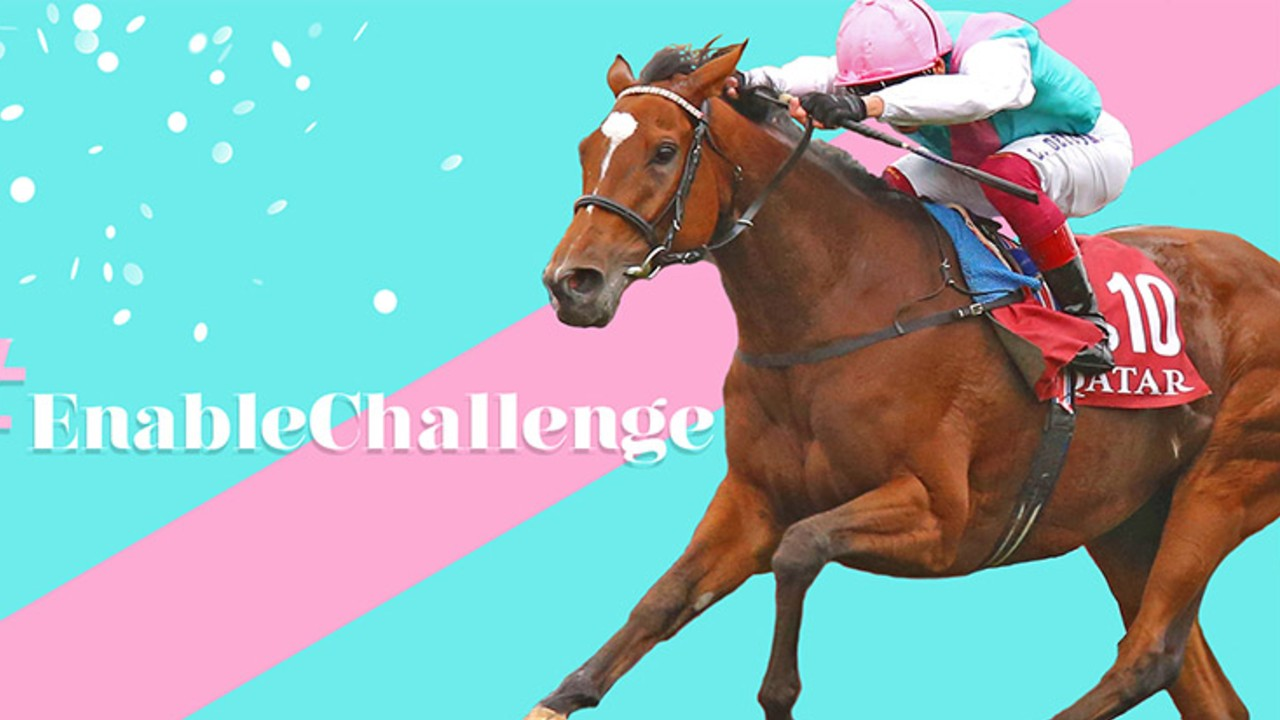 Thumbnail for The Great Mare Enable gets ready for attempt at Third 'Arc