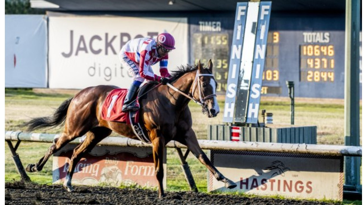 Thumbnail for Hastings Park Wagering Increases 15% in 2019