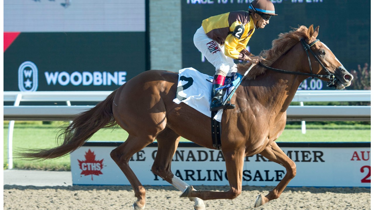 Thumbnail for Woodbine –  Grade 3 (times two): Ontario Derby and Durham Cup co-featured on Saturday