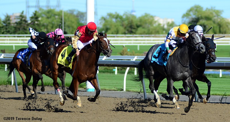 Thumbnail for Top Canadian-breds go for Grade 1s Saturday at Belmont