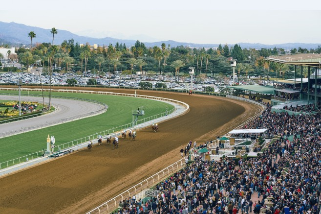 Thumbnail for Equine Welfare and Safety in Horse Racing Act Introduced in California