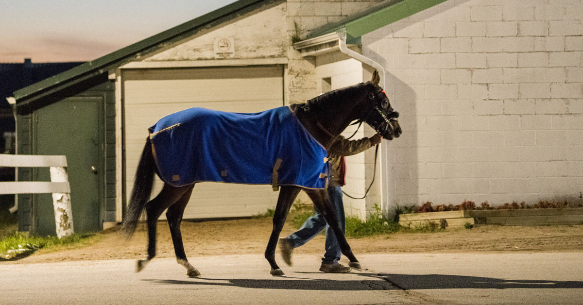 Thumbnail for Horse Racing Integrity Act Makes a Move in House