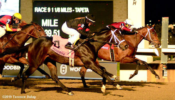 Lecomte Stakes at Fair Grounds Saturday: (Very) Early Kentucky Derby and Queen's Plate Test