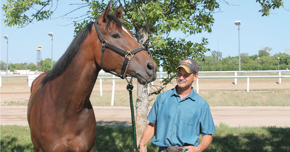 Thumbnail for Perfect filly Hidden Grace the latest Manitoba-bred star