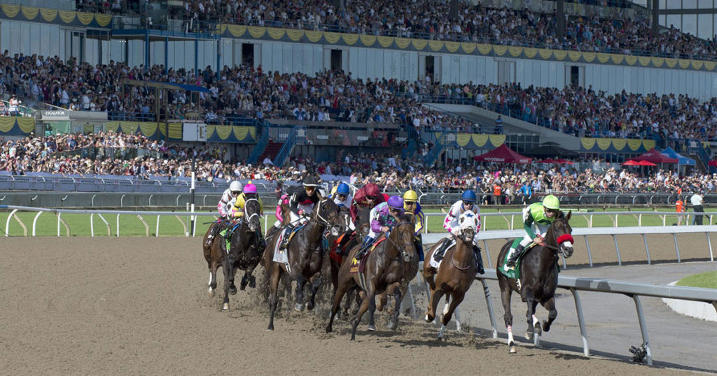 2019 Queen's Plate champion One Bad Boy leading the field in the first turn at Woodbine Racetrack. (Michael Burns Photo)