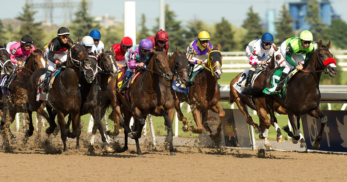 Woodbine 2020 Thoroughbred Updated Stakes Schedule Now Available