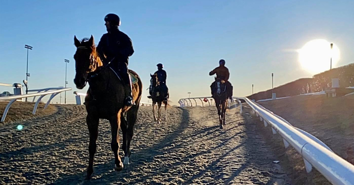 Thumbnail for Woodbine Community Rallies Together To Keep Horses in Training